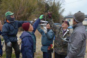 剪定を指導する遠藤さん(右から2番目)